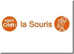 Logo SOURIS