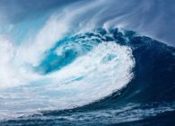 PPCR : deuxième vague